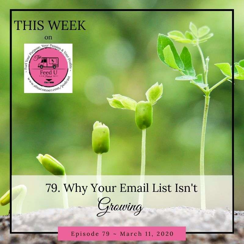 79. Why Your Email List Isn't Growing