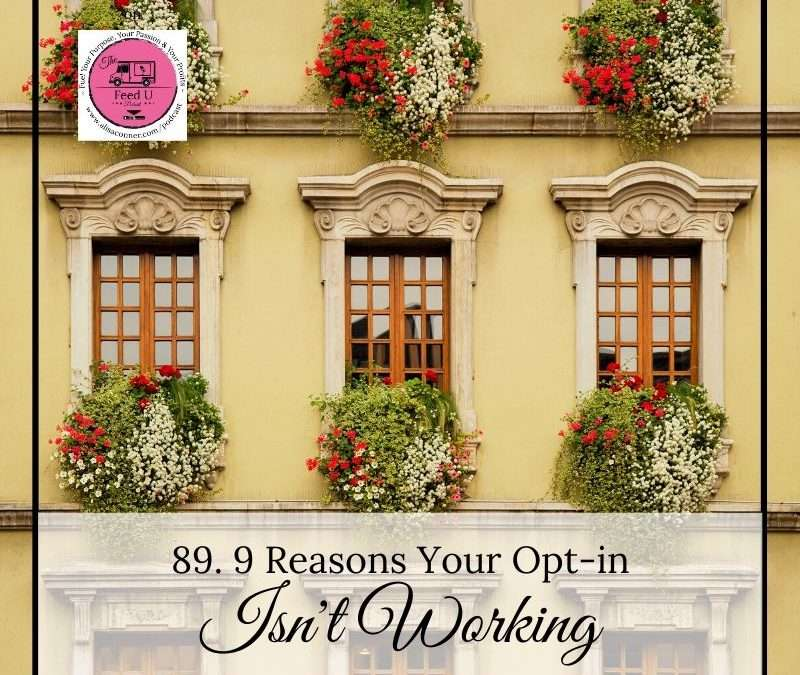 89. 9 Reasons Why Your Opt-in Isn't Working