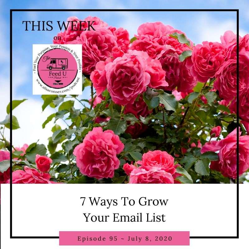 95. 7 Ways To Grow Your Email List